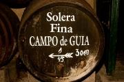 bodega-gutierrez-colosia-13