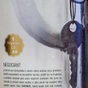 Davinus-Rulandske-Bile-3