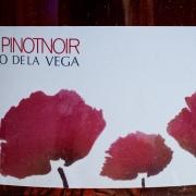 Dominio-de-la-Vega-Pinot-Noir-Brut-1
