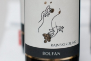 bolfan-vinski-vrh-rajnski-rizling