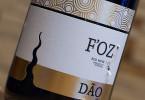Foz Dao
